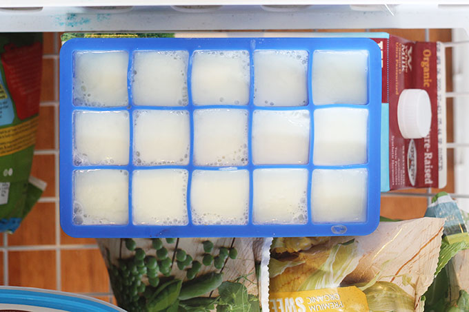 Freeze Milk Directly In Ice Cube Trays