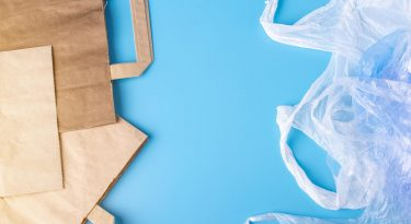 The Ban Includes Both Paper And Plastic Bags